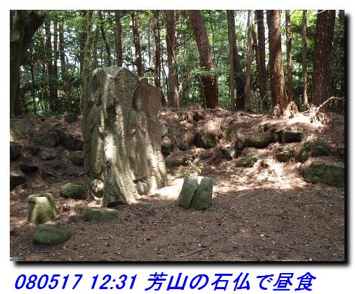 080517_houyamasekibutu_001_2