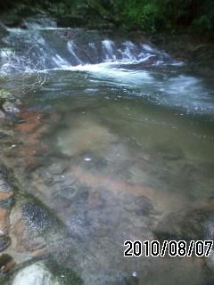 100807-3 鍋谷滝の上