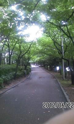 120622 散歩道
