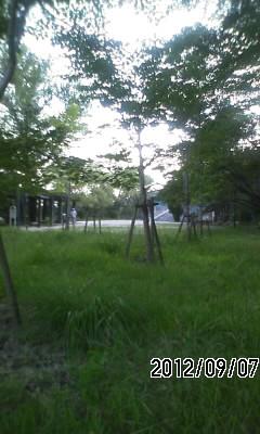 120907 住吉川河口から渦森台