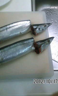 121017 秋は秋刀魚