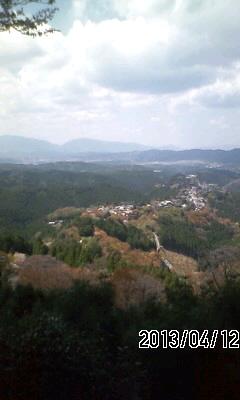 130412 吉野山の残念桜
