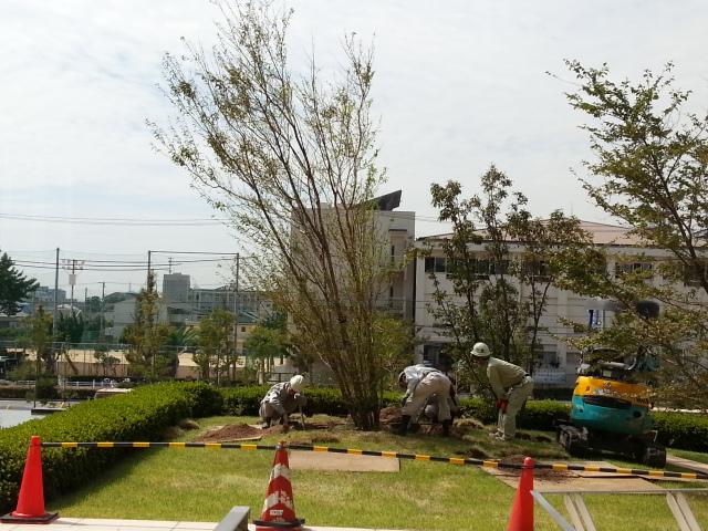 130930 台風倒木の改修