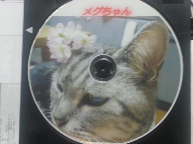 140729 DVD完成
