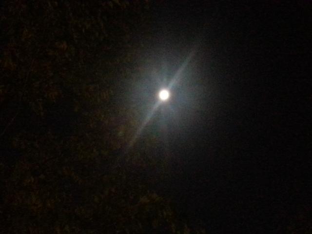140908 中秋の名月