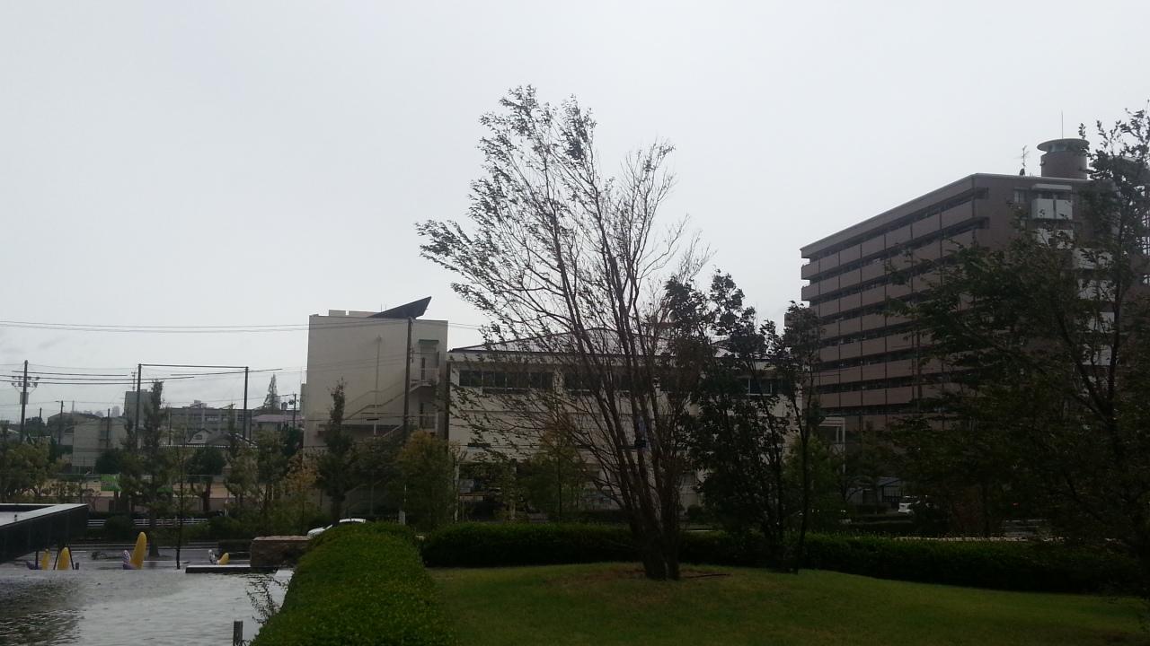 141013 台風19号来襲