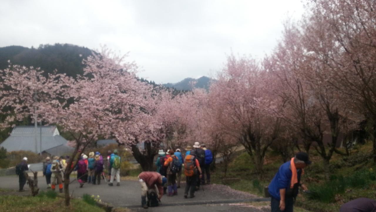 150411 仏隆寺から三郎ヶ岳へ