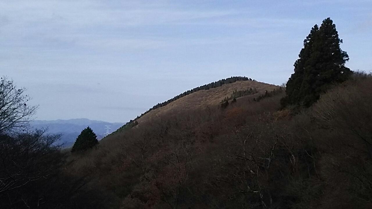 161126 「宕陰から地蔵山、水尾