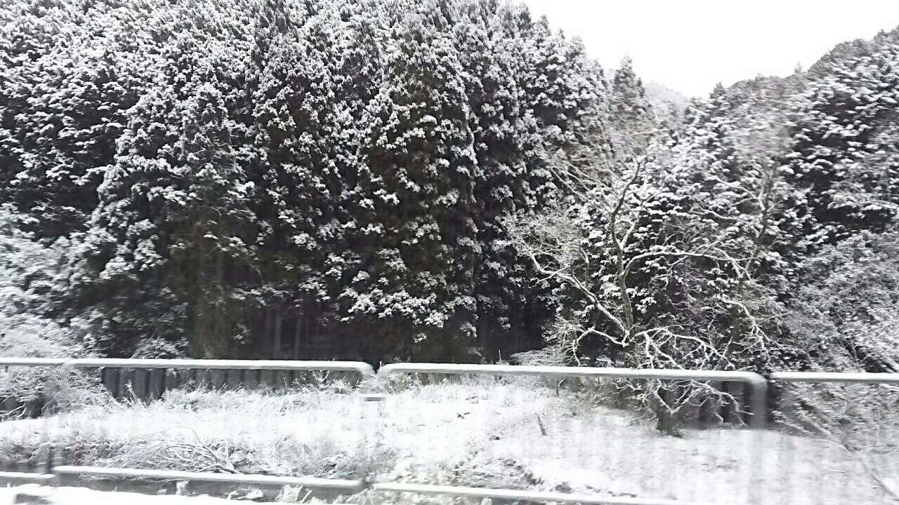 170212 今日は大雪