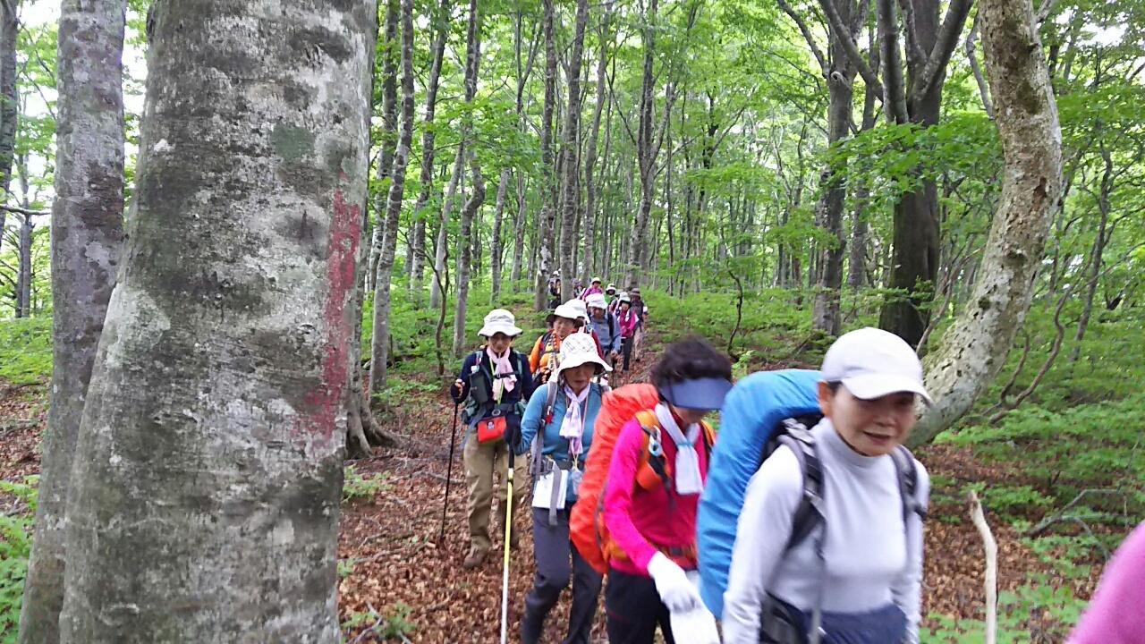 170527 能登越から近江坂、大日の例会完了