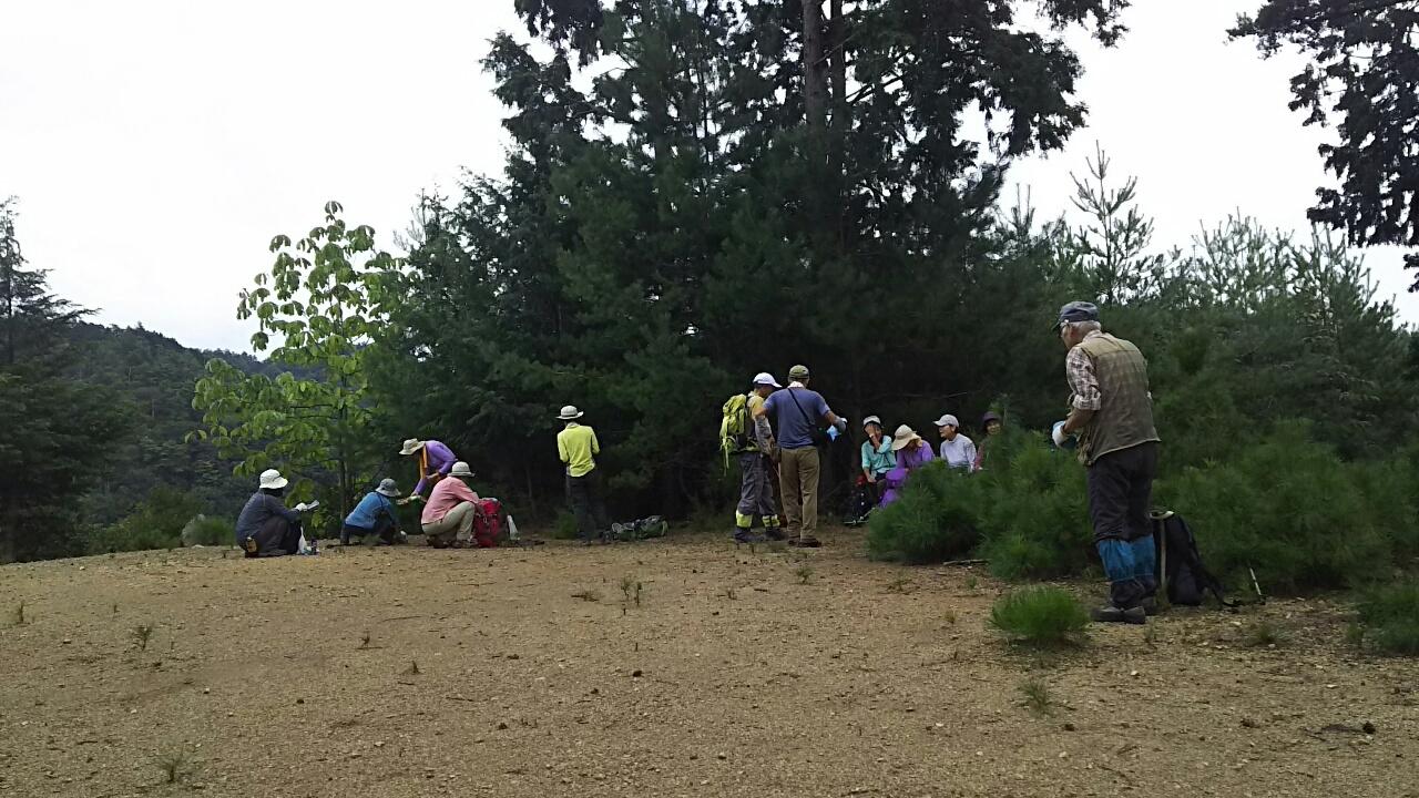 170909 小野谷峠から大見尾根の例会、無事完了