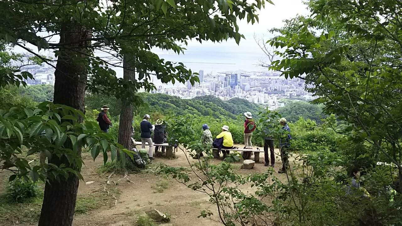 180519 菊水山から鍋蓋山、摩耶山の例会無事完了
