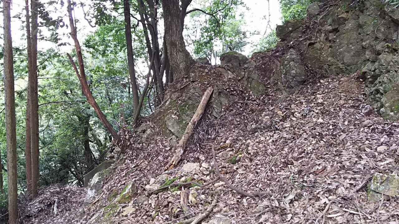 181013 栂ノ尾尾根末端の下見完了