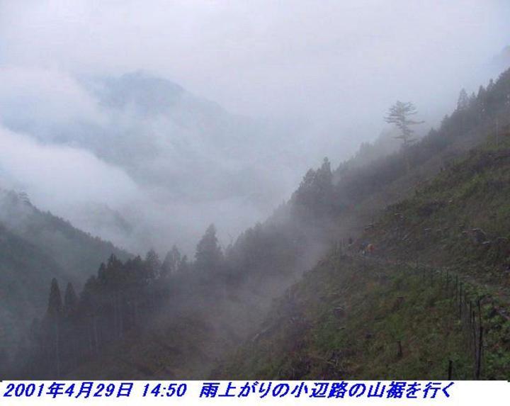 010428_30_kohechi_004