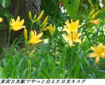 050611_12_SannouBoushiYama_Yumoto_011