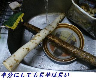 060124_Yakimoki_001