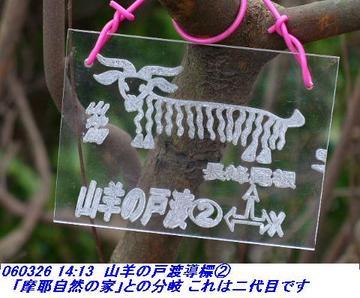 060326_mayayabumiti_shisekikoen_yagin_00423_shisekikouen_hakumokuren_11