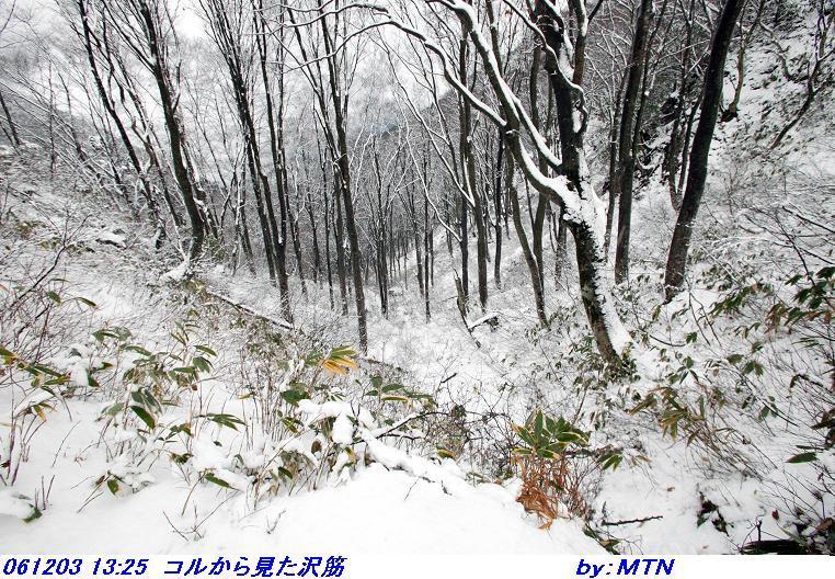061203_1325_korukara__mita_sawasuji