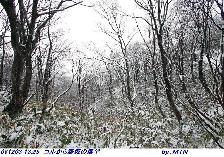 061203_1325_korukara_nosakano_tenbo