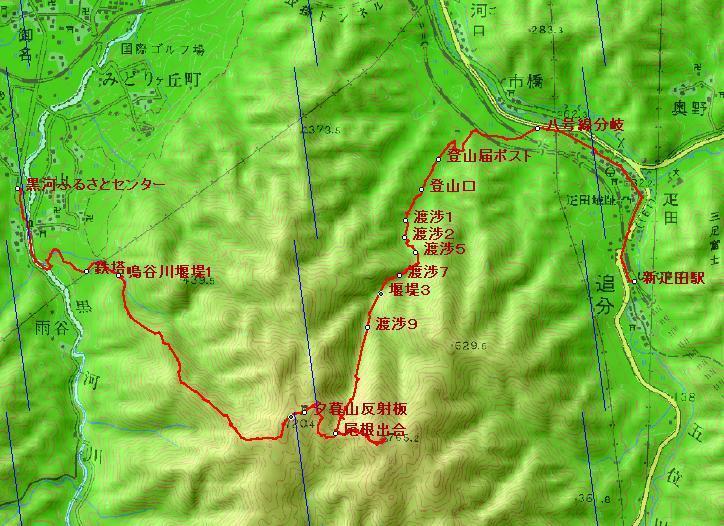 061203_iwakomoriyama_root