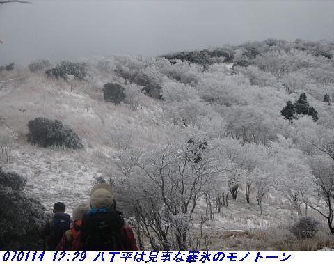070114_miuneyama_shitami_012_1
