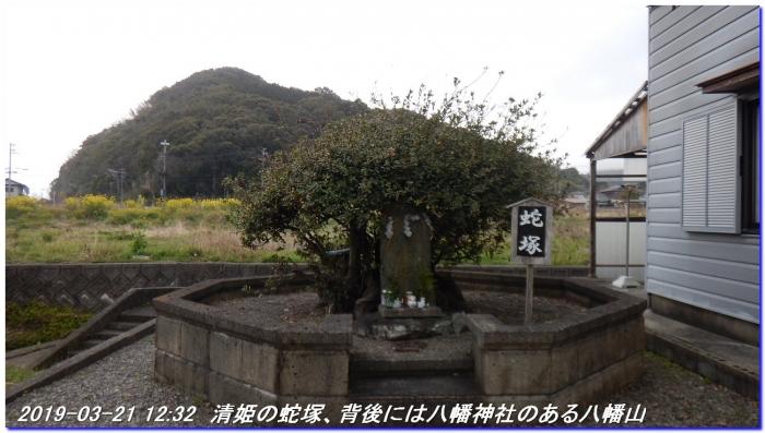 190321_kiiutihara_dojyoji_gobo_023