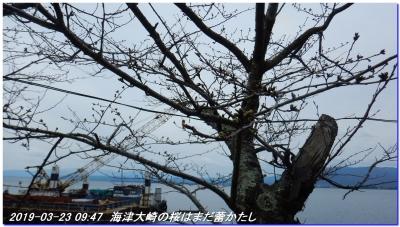 190323_kaiduoosaki_manjigoe_001