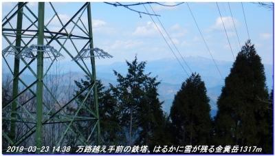 190323_kaiduoosaki_manjigoe_056