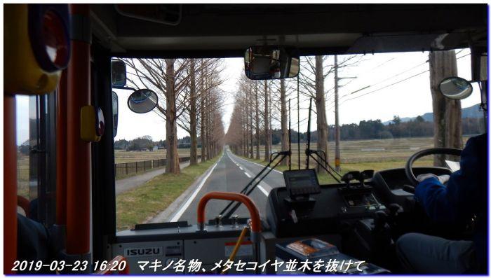 190323_kaiduoosaki_manjigoe_071