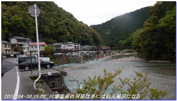 190430_warabio_hatenasitoge_02