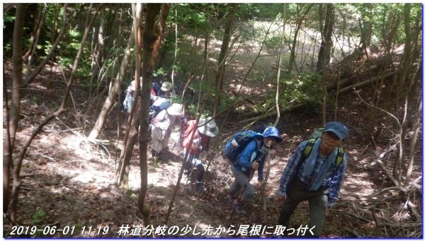 190601_akaoyama_bisyamonyama_023