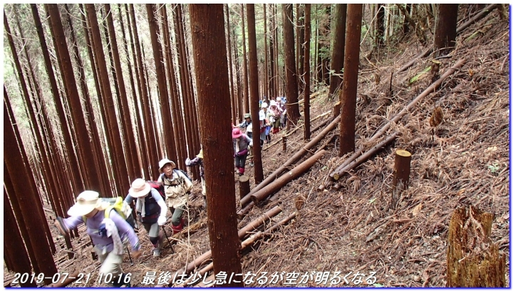190721_hangokutakayama_kuguitoge_017