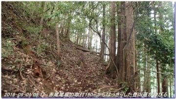 190901_akaoyama_sawanoike_004