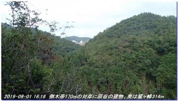 190901_akaoyama_sawanoike_043