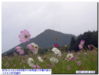 081005_arimafuji_005