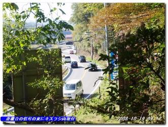 081019_kisurashiyama_004