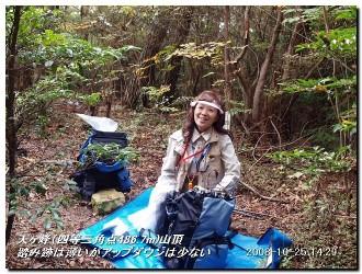 081025kisurashiyama_16