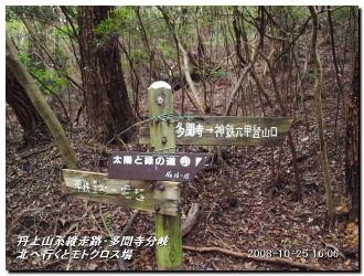 081025kisurashiyama_20