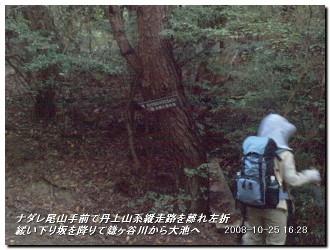 081025kisurashiyama_21