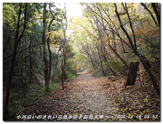 081116_arimafuji_001_3