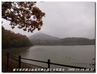 081116_arimafuji_002