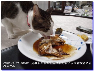081231_tuki_kinsei_nakko_hage_003
