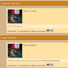 090022_cat_blogwriter
