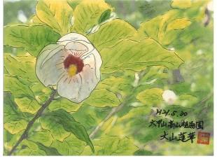 090530_ooyamarenge21