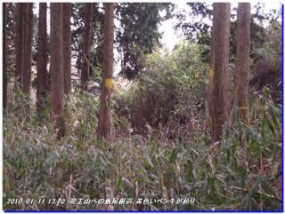 100111_anashiyama_ryuouyama_012