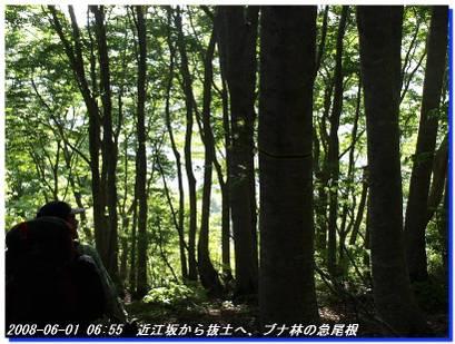 080601_oumisaka_ootaniyama_2