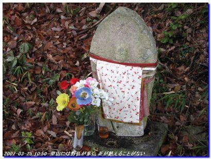 070325_ponponyama_002