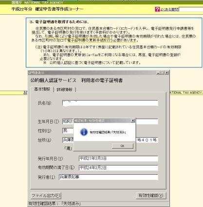110227_e_tax_error