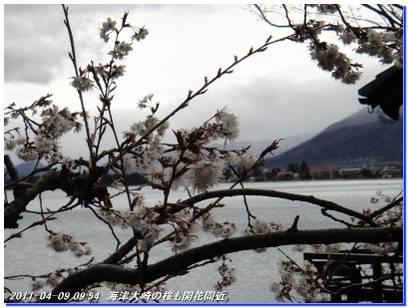 110409_kaiduoosaki_higashiyama__001