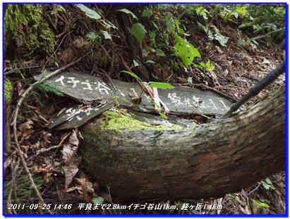 110925_ichigodaniyama_043